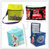 PP woven insulated cooler bag
