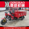 Three wheel motorcycle passenger/Strong engine power tricycle