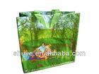 Supermarket PP Carry Bag