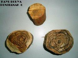 Kayu Buaya Incense wood
