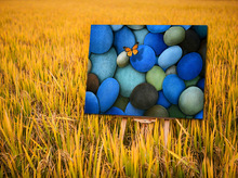 Decorative Canvas Painting Still Life Images