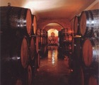 Argentinean, Chilenean Wines (The best of World)