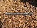 a partir do paquistão quente venda de farinha de semente de algodão