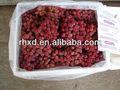 chinois globe raisin rouge de haute qualité sur hot saling