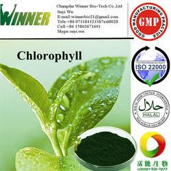 Pigment/Chlorophyll/Sodium Copper Chlorophyllin/Plant extract