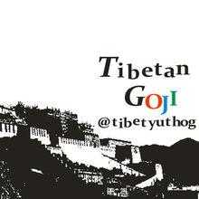 tibetan goji berry