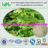 Natural gynostemma pentaphyllum extract powder 98% UV/Gynostemma Extract