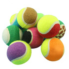 Personalized blue pet toy tennis ball