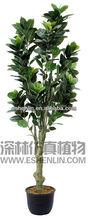decorative artificial oak tree,artificial big trees,exotic plants