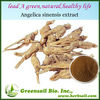 2014 High quality natural plant extract Doubleteeth Angelica Root Extract
