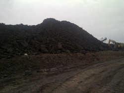 Kalimantan Steam Coal Caloric Gar 4800-5000 (ARB)