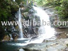 Land tours in Hoian, Danang, Hue, DMZ