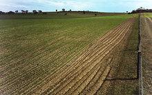 Agriculture farmlands