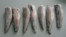 Frozen hake Gayi HGT and fillet