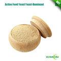 Piensos activo levadura seca de rumiantes/activo feed levadura para rumiantes