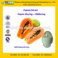 Certificado GMP de la fuente del fabricante alta calidad papaína enzima