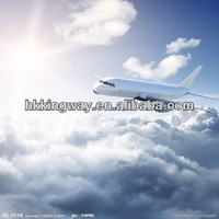 Courier service from China to Russia,Ukraine,Norway