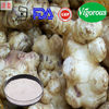 GMP factory jerusalem artichoke extract inulin manufacturer china