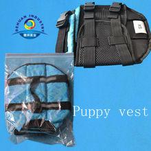 Dog life vest for puppy