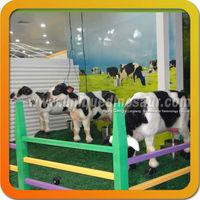 Cute fiberglass cow for sale