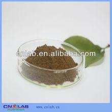 Factory Offer Belladonna Extract Belladonna Herb