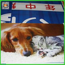 Digital Printing 3m adhesive Dog Cats Printed stickers Maker