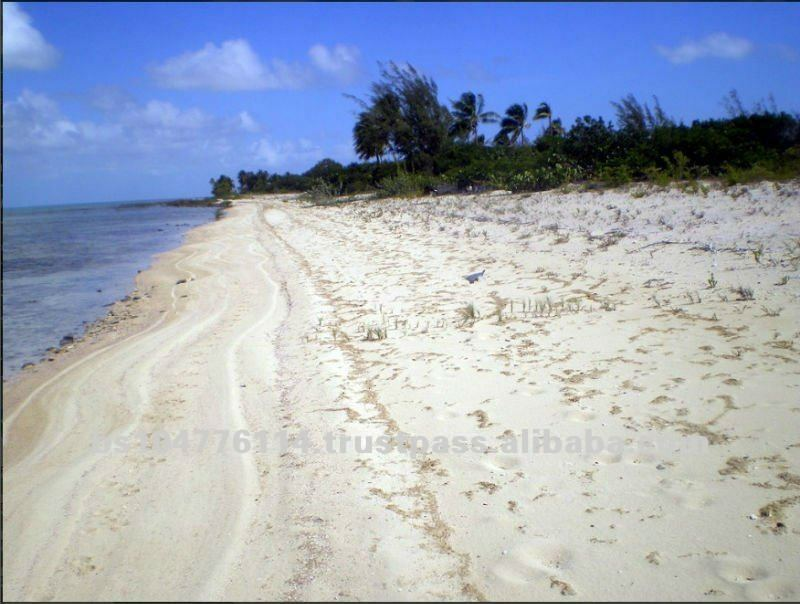 Mason Bay Acklins Bahamas Beach Land