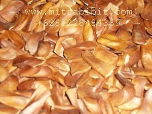Cielo frutas - semillas de caoba de semillas - Biji Mahoni ( de usos múltiples )