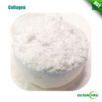 Bio Marine Collagen / Marine Collagen Powder