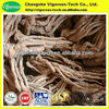 natural angelica sinensis extract/angelica sinensis p.e