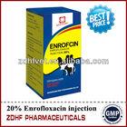 Animals Enrofloxacin Injectable Drug
