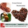 theobromine cacao extract powder/cocoa bean extract