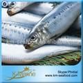 precio justo de pescado congelado sardina de pescados y mariscos