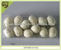 2014 primavera novo design plástico decoração de páscoa artesanal de suspensão de ovos