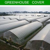greenhouse plastic white transparent film for vegetable,flowers,mushrooms,animals, pigs,chicken