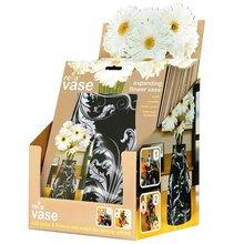 Reva Expanding Vases