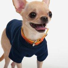 Cotton T shirt(Navy) - Dog Clothing Pet Clothing Pet Clothes Dog T shirt