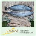 exportateurs de fruits de mer poissons types nom