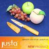 Fruit pattern fruit knife set with sheath