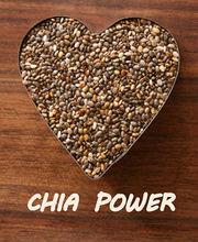 Premium Chia Seeds nutritious superfoods for Export 8.50 per kilogram