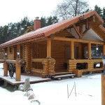 Timber logs, pine logs