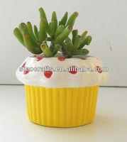 sweet heart cupcake ceramic mini flower pot