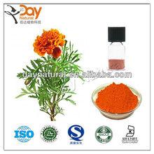 KOSHER Marigold Flower Extract (Hot Sale)