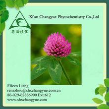 High Quality Trifolium pratense Extract/formononetin/Red Clover p.e