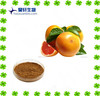 organic grapefruit seed extract 10:1