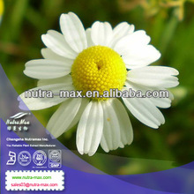 Factory Supply Wild Chamomile P.E.