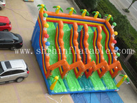 kids giant inflatable water slide/cheap inflatable water slides for sale