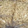 china peeled garlic price 2013