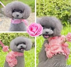 pink /dog pet harnesses luxury handmade flower harnesses
