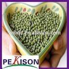New Crop Green Mung Beans